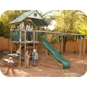 Lifetime Deluxe Commercial Grade Metal Playset w