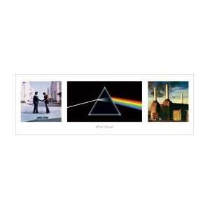 PINK FLOYD Album Covers Slim Print Music Poster