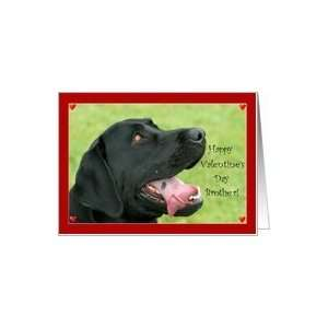 Happy Valentines Day Brother Labrador Retriever dog Card